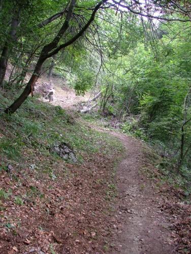 Manut.sentiero Pesciola 11.09.2004